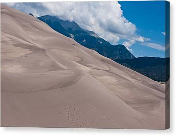 Miles Of Sand Canvas Print by Colleen Coccia