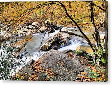 Mill Creek  Canvas Print by JC Findley