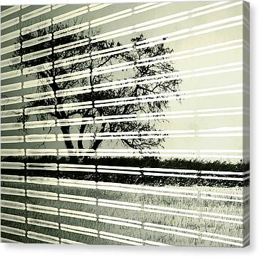 Mirages Wind Canvas Print by JC Photography and Art