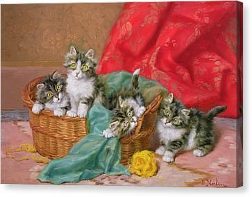 Mischievous Kittens Canvas Print by Daniel Merlin
