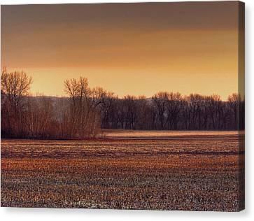 Missouri Bottoms Sweet Light Canvas Print by William Fields