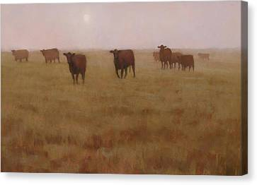 Missouri Morn Canvas Print by Brian Freeman
