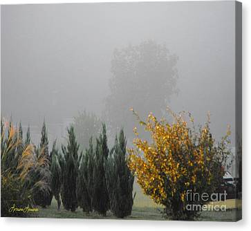 Misty Fall Day Canvas Print by Lorraine Louwerse