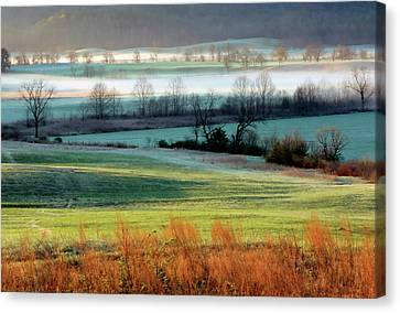 Misty Morning At Cades Cove Canvas Print by Dave Mills