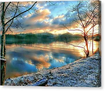 Misty Morning Canvas Print by Gail Bridger