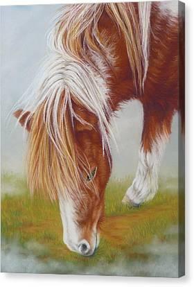 Misty Morning Canvas Print by Margaret Stockdale