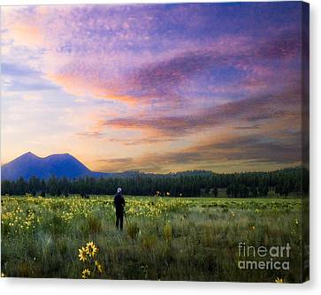 Monet Morning Canvas Print by Arne Hansen