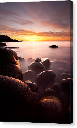 Monument Cove Acadia Canvas Print by Chad Tracy