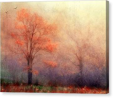 Moods Of Autumn Canvas Print by Darren Fisher