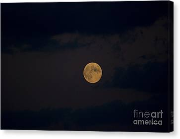 Moon Rising 05 Canvas Print by Thomas Woolworth