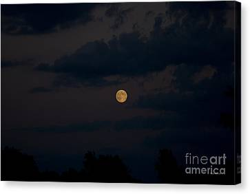 Moon Rising 06 Canvas Print by Thomas Woolworth
