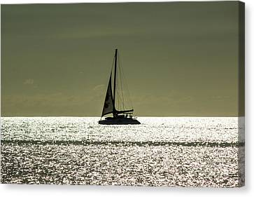 Moonlight Sail Canvas Print by Rene Triay Photography