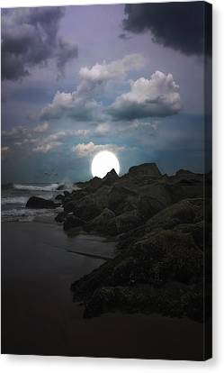 Moonlight Tonight Canvas Print by Tom York Images