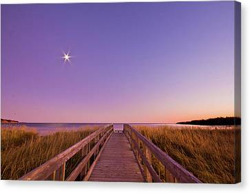 Moonlit Boardwalk At Beach Canvas Print by Nancy Rose