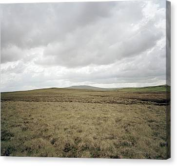 Moorland Canvas Print by Michael Marten