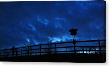 Morning Blues Canvas Print by Deb Martin-Webster