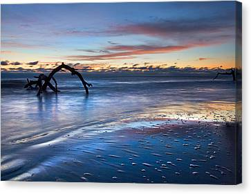 Morning Calm At Driftwood Beach Canvas Print by Debra and Dave Vanderlaan