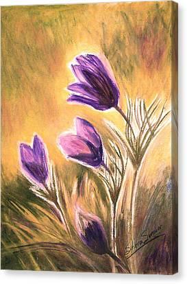 Morning II Canvas Print by Shera Summer