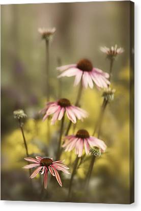 Morning In The Garden Canvas Print by Rebecca Cozart