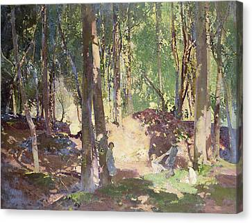 Morning In The Woods Canvas Print by Harry Watson