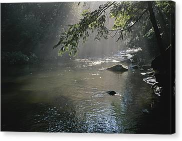 Morning Mist Lifts Off The Tellico Canvas Print by Stephen Alvarez