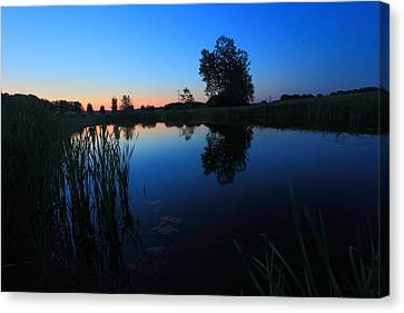 Morning Pond In Blue Canvas Print by Jiayin Ma