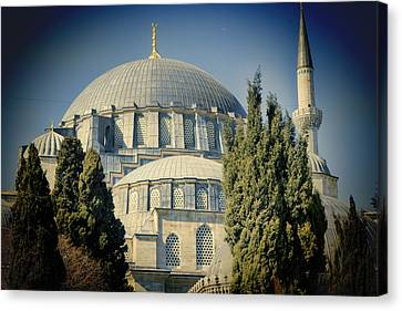 Mosque Magnificent Canvas Print by Joan Carroll