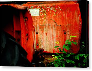 Moss And Rust V Canvas Print by Toni Hopper