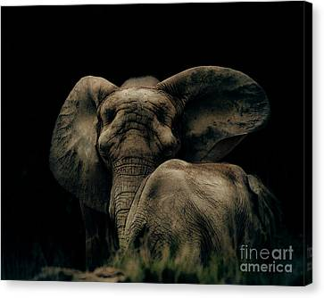 Mother And Child Canvas Print by Arne Hansen