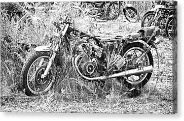 Motorcycle Graveyard Canvas Print by Douglas Barnard