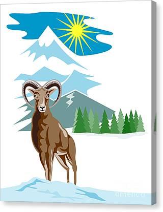 Mouflon Sheep Mountain Goat Canvas Print by Aloysius Patrimonio