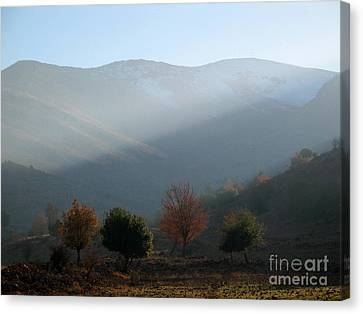 Mount Hermon In Fall Canvas Print by Issam Hajjar