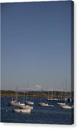 Mt Baker Looms Over A Harbor Full Canvas Print by Taylor S. Kennedy