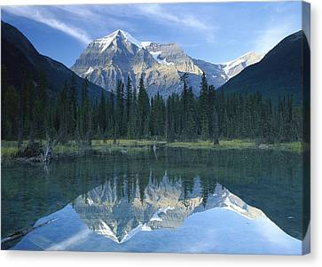 Mt Robson Highest Peak In The Canadian Canvas Print by Tim Fitzharris