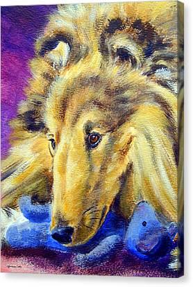 My Blue Teddy - Shetland Sheepdog Canvas Print by Lyn Cook