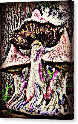 Mystic Mushrooms Canvas Print by Corrie Knerr