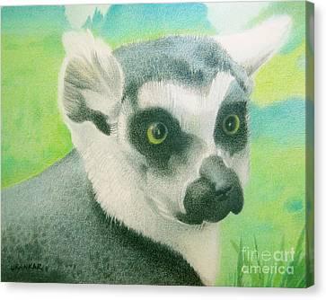 Mystic Seer Of Madagascar Canvas Print by Lisa Urankar