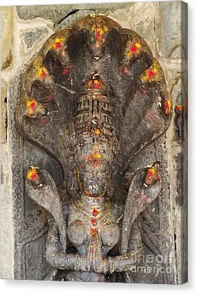 Naga Goddess Canvas Print by Jarrod Brown