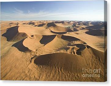 Namib Desert Canvas Print by Namib Desert