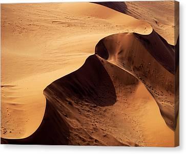 Namibia Aerial Vi Canvas Print by Nina Papiorek