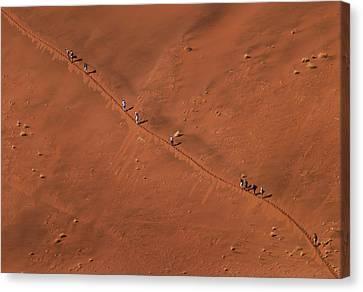Namibia Dune Hoppers Canvas Print by Nina Papiorek