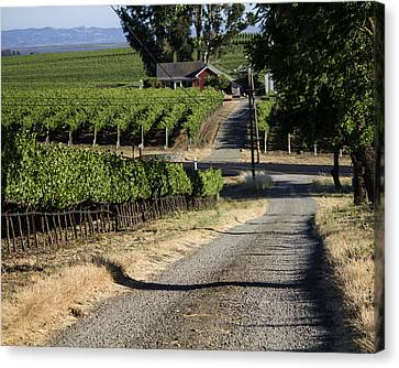 Napa Farmhouse Canvas Print by Dee  Savage