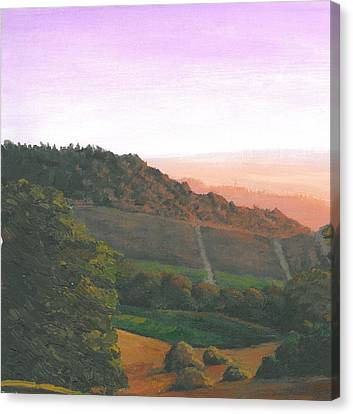 Napa Orchards Canvas Print by DC Decker