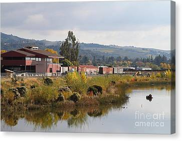 Napa River In Napa California Wine Country Canvas Print by Wingsdomain Art and Photography