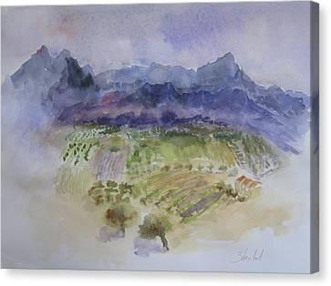 Napa Valley Ll Canvas Print by Carolyn Zbavitel