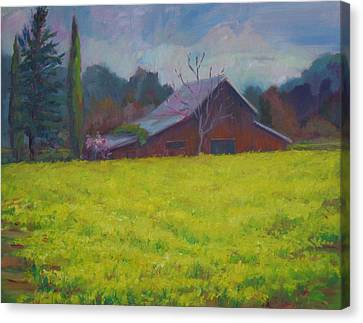 Napa Valley Mustards And Red Barn Canvas Print by Deirdre Shibano