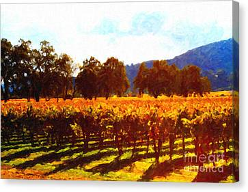 Napa Valley Vineyard In Autumn Colors 2 Canvas Print by Wingsdomain Art and Photography