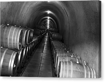 Napa Wine Barrels In Cellar Canvas Print by Shane Kelly