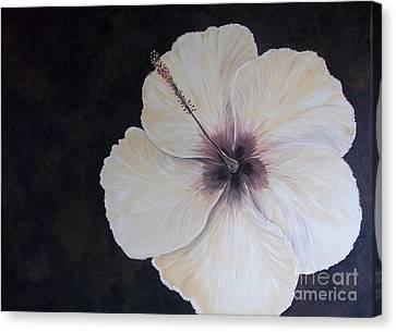 Naples Yellow Hibiscus  Canvas Print by Rhonda Lee