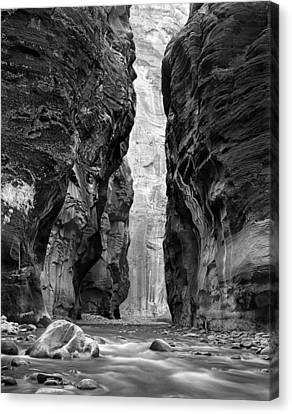 Narrows Of The Virgin River Canvas Print by Nathan Mccreery